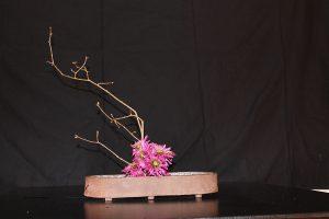 Ikebana d'hivern