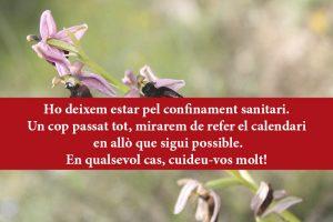 Natura, mindfulness i pregària del cor